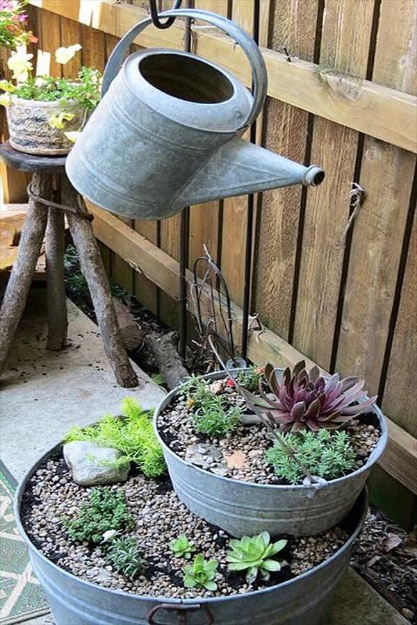 Watering the Succulent Bucket