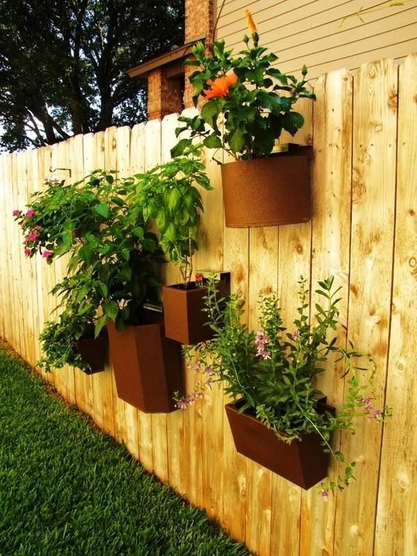 Amazing Flower planters