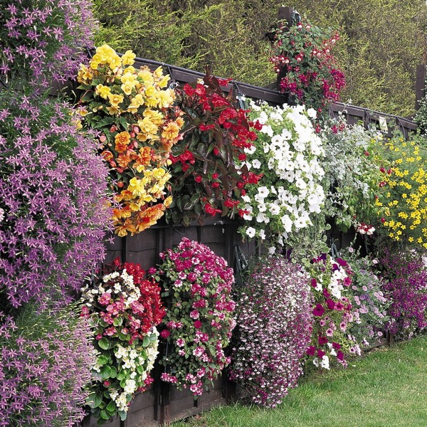 Drooping Flower Baskets