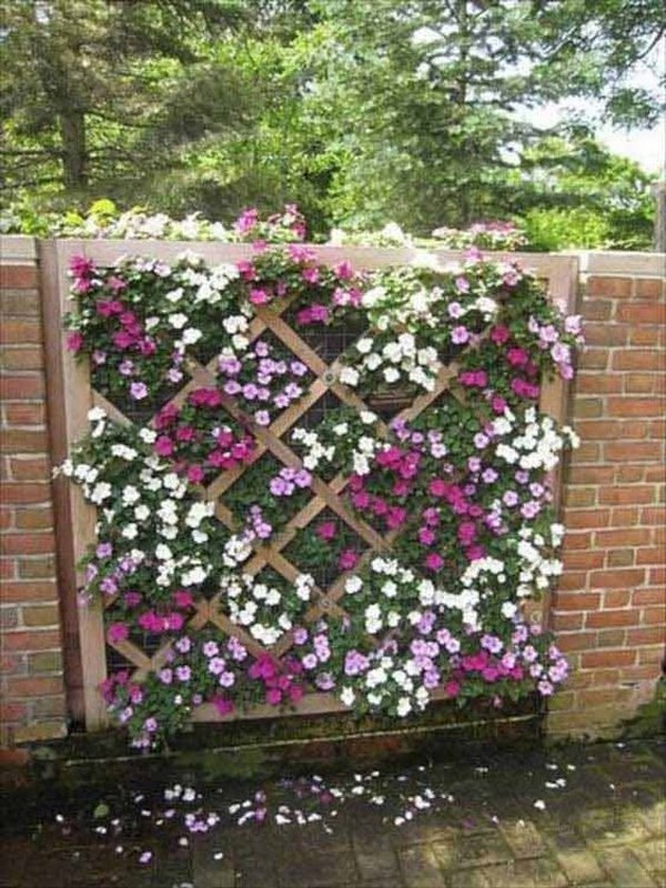 Long brick wall with a lattice planter fence