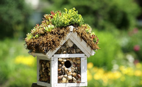 DIY Ideas to Make Your Garden