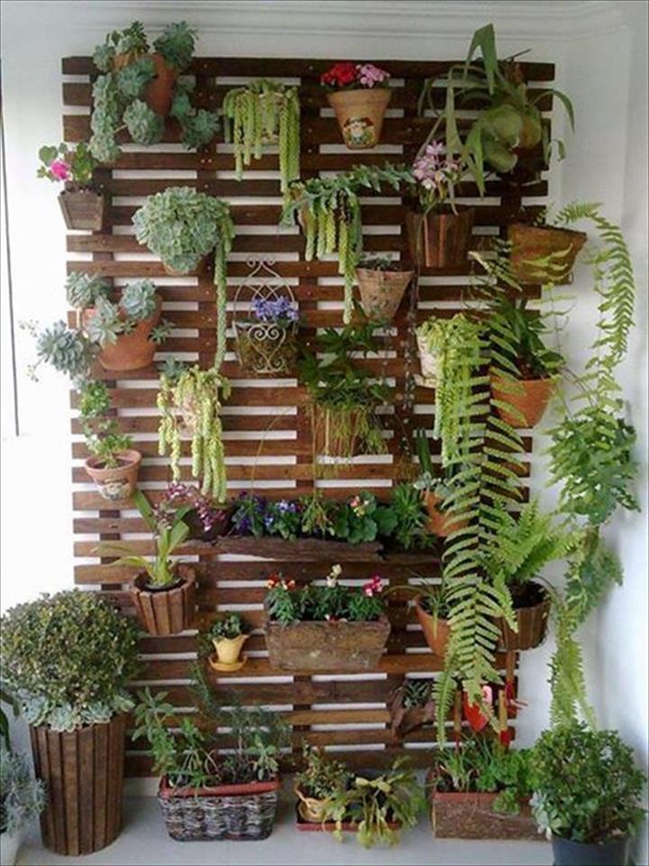 Interesting Pallet Planters