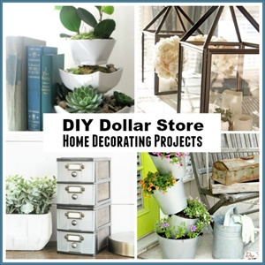 Dollar Store Home Organizing Ideas