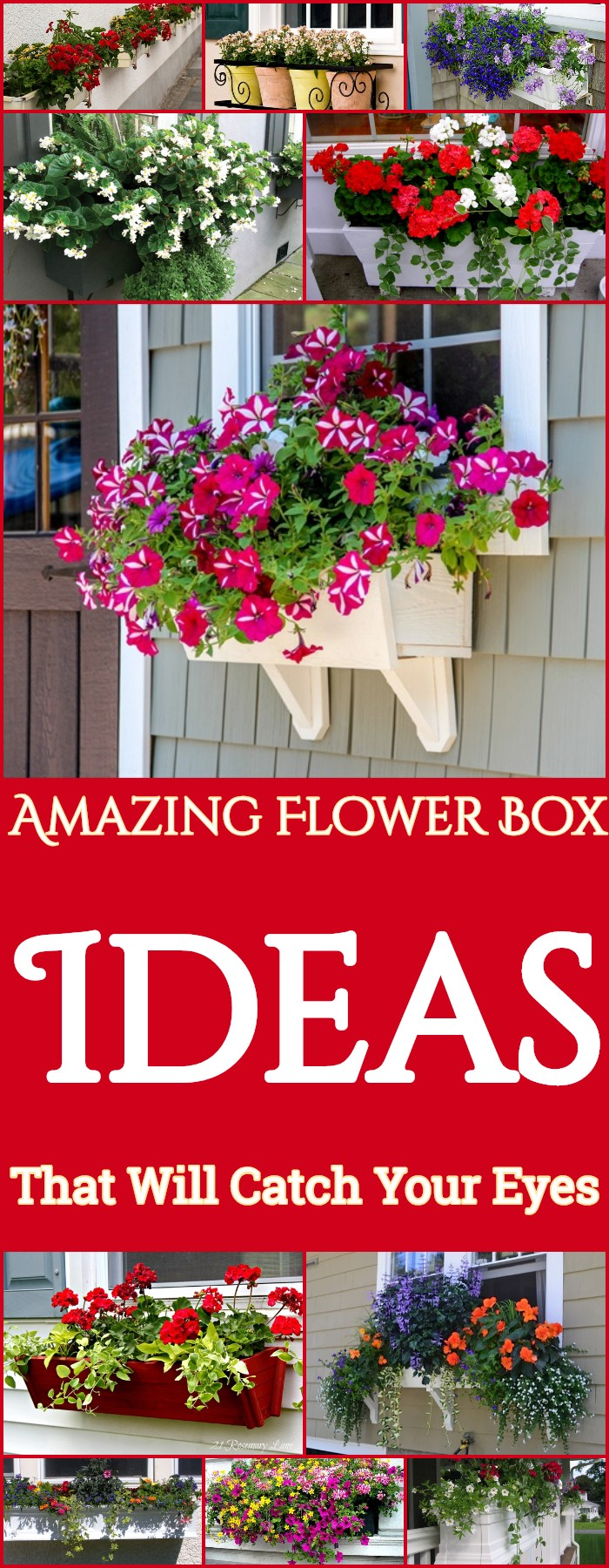 Amazing Flower Box Ideas That Will Catch Your Eyes