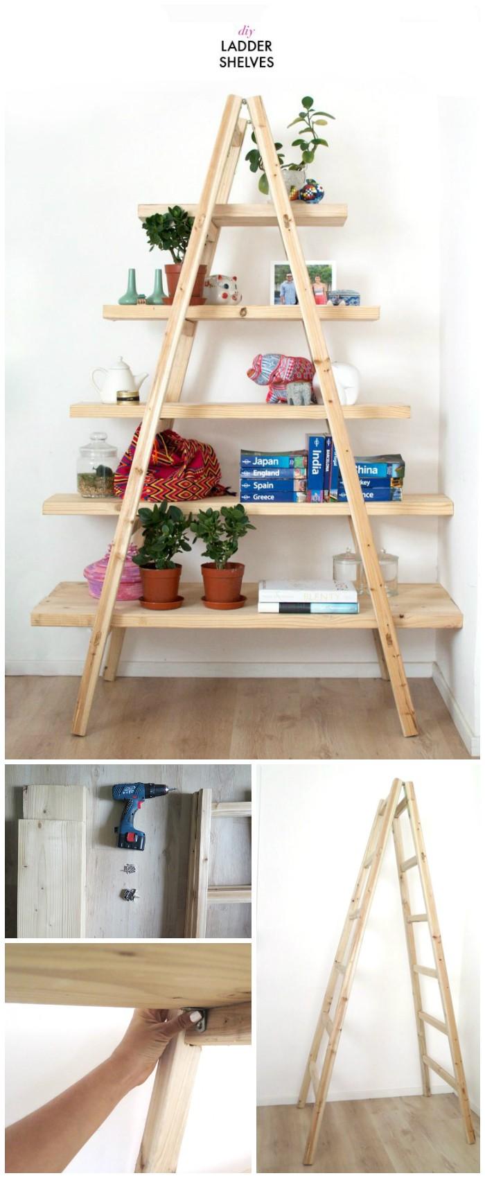 Cool DiIY Ladder Shelves