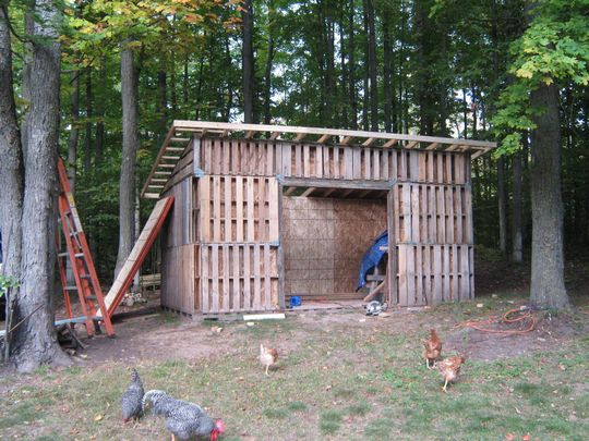Build Your Own Pallet Shed