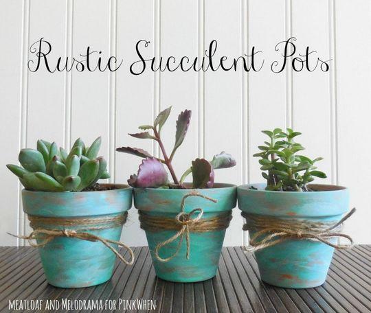 DIY Rustic Succulent Pots