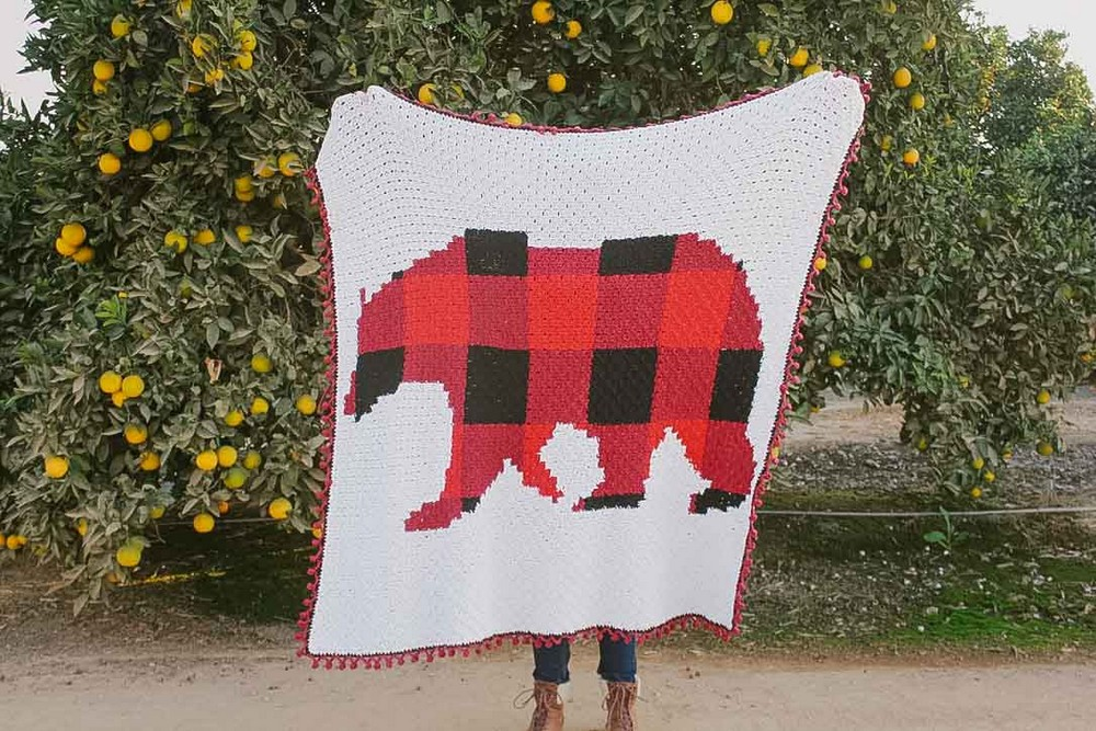 Modern, Rustic C2C Bear Blanket Pattern