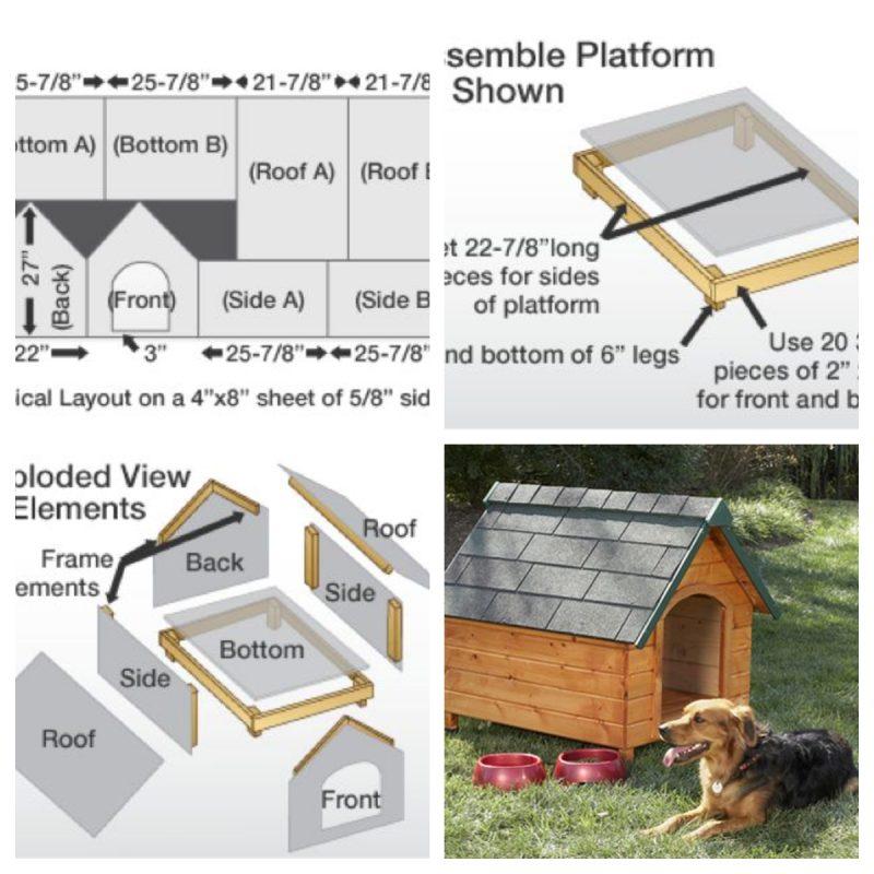 Beginner's Basic Dog House