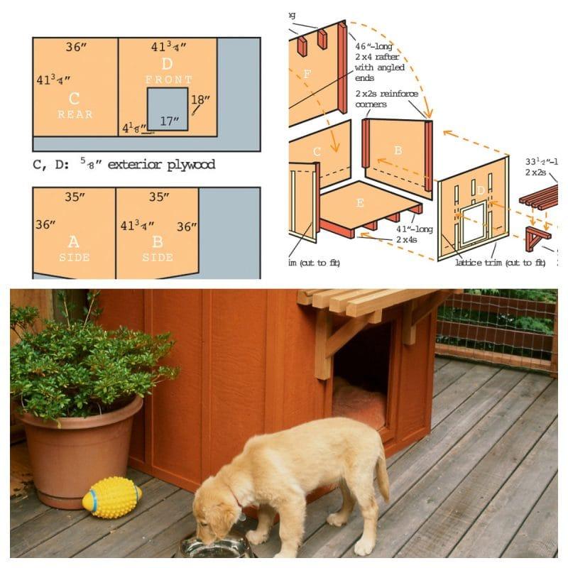 Mini Ranch Dog House Design