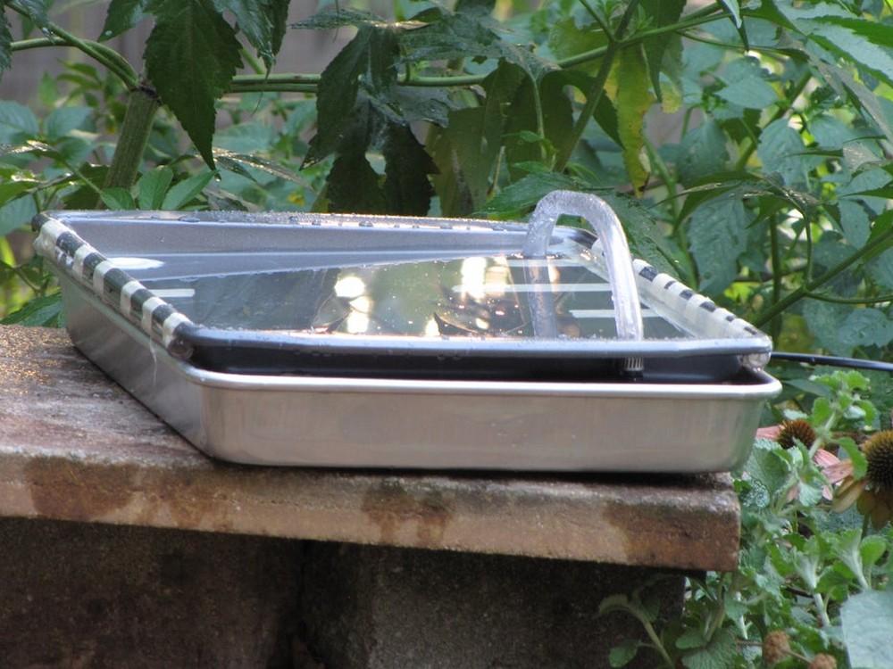 Solar Powered Hummingbird Bath